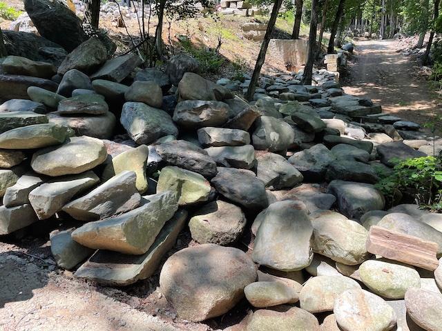 石と木を巡るツアー